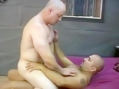 Muscled gay bears drill their asses bareback